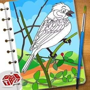 Super Birds Kids Coloring Game